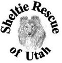 Sheltie Rescue of Utah